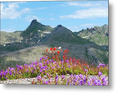 Mountains And Wildflowers Metal Print by Robert  Moss