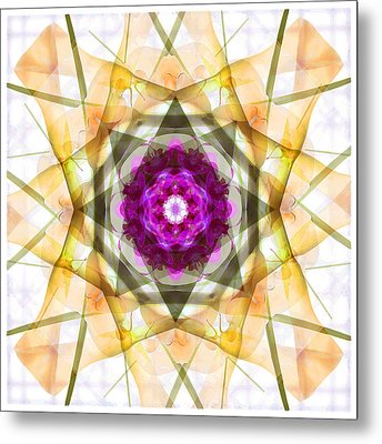 Multi Flower Abstract Metal Print by Mike McGlothlen