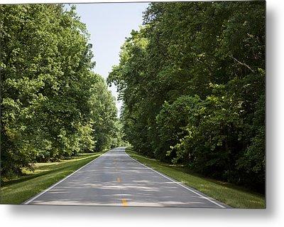 Natchez Trace Parkway In Cobert County Metal Print by Carol M Highsmith