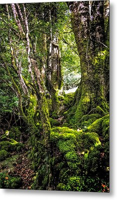Natural Emeralds. I Wicklow. Ireland Metal Print by Jenny Rainbow