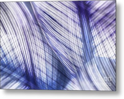 Nature Leaves Abstract In Blue And Purple Metal Print by Natalie Kinnear