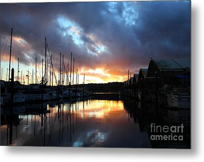 Nature's Glory Metal Print by Alison Tomich