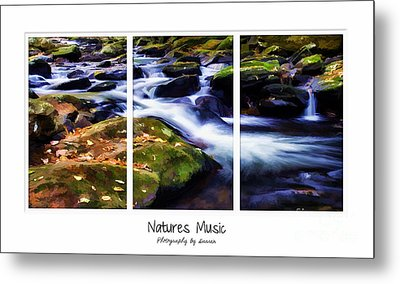 Natures Music Metal Print by Darren Fisher