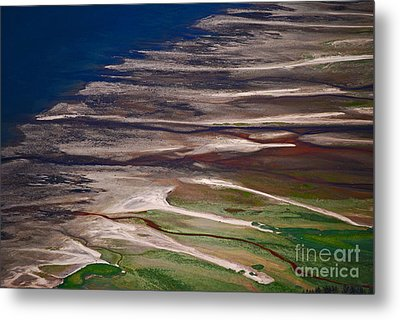 Metal Print featuring the photograph Nature's Palette by Cynthia Lagoudakis