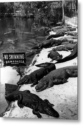 No Swimming Metal Print by Retro Images Archive