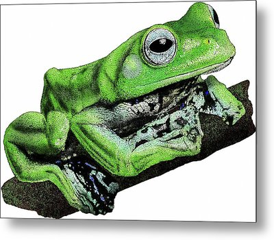 Norhayatis Flying Frog Metal Print