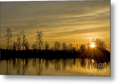 On Golden Pond Metal Print by Nick  Boren