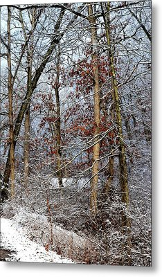 On Such A Winter's Day Metal Print