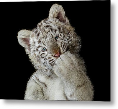 Oops! Did I Scare You? Metal Print