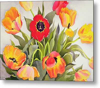 Orange And Red Tulips  Metal Print by Christopher Ryland