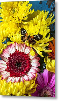 Orange Black Butterfly With Red Mum Metal Print by Garry Gay