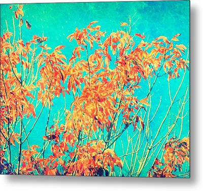 Orange Leaves And Turquoise Sky  Metal Print by Elizabeth Budd