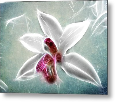 Orchid Blues Metal Print by Fiona Messenger