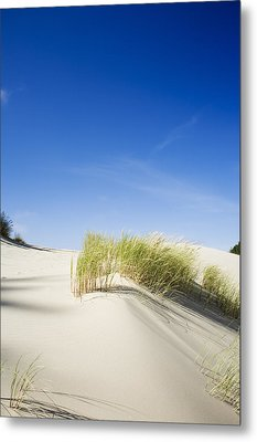 Oregon Dunes Metal Print by Charmian Vistaunet