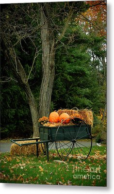 Outdoor Fall Halloween Decorations Metal Print by Amy Cicconi
