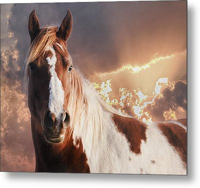 Painted Sunrise Metal Print by Ron  McGinnis