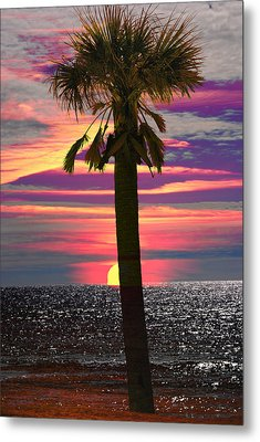 Palm Tree At Sunset Metal Print by Michele Kaiser