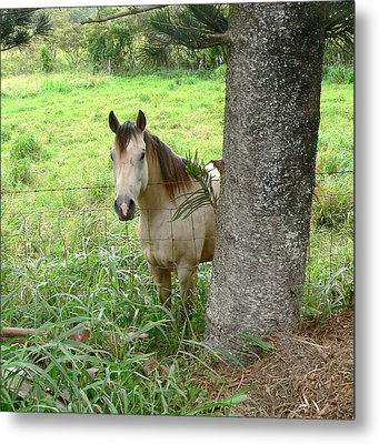 Palomino Horse Metal Print