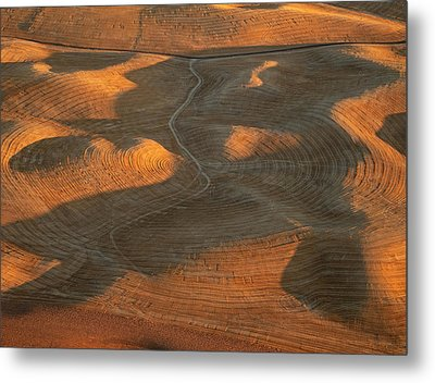 Palouse Contours Iv Metal Print by Latah Trail Foundation