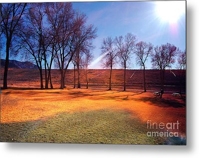 Park In Mcgill Near Ely Nv In The Evening Hours Metal Print by Gunter Nezhoda