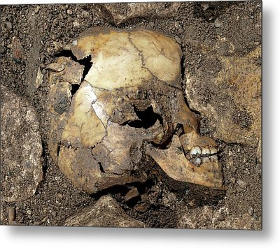 Partially Excavated Human Fossil Metal Print