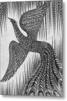Peacock Metal Print by Anca S