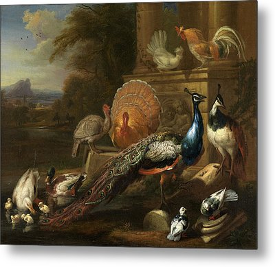 Peacocks, Doves, Turkeys, Chickens And Ducks By A Classical Metal Print