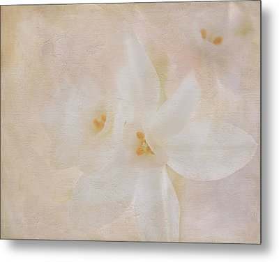 Pearl On Petals Metal Print