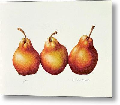 Pears Metal Print by Annabel Barrett