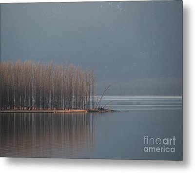 Peninsula Of Trees Metal Print by Leone Lund