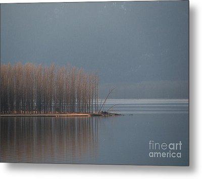 Peninsula Of Trees Metal Print