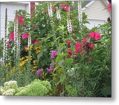 Metal Print featuring the photograph Perennial Garden 1 by Margaret Newcomb