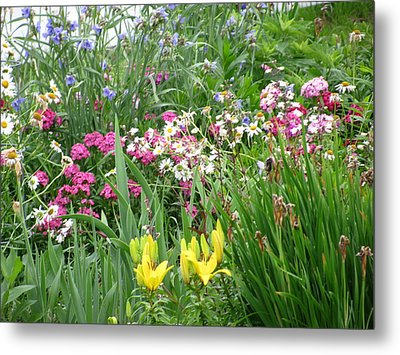Metal Print featuring the photograph Perennial Garden 2 by Margaret Newcomb
