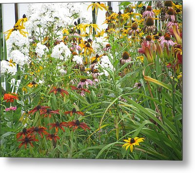 Metal Print featuring the photograph Perennial Garden 3 by Margaret Newcomb