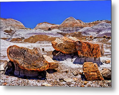 Metal Print featuring the photograph Petrified Forest - Painted Desert by Bob and Nadine Johnston