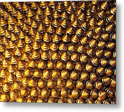 Pincushion Metal Print by Kaleidoscopik Photography