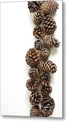 Pine Cones Metal Print by Edward Fielding