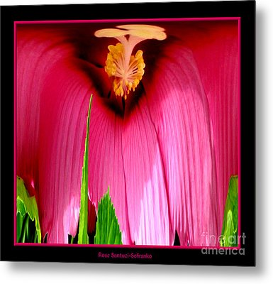 Pink Hibiscus Abstract Metal Print by Rose Santuci-Sofranko