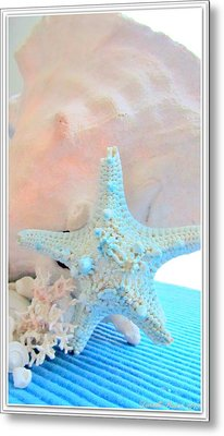 Pink White And Blue Conch And Sea Shells  Metal Print by Danielle  Parent