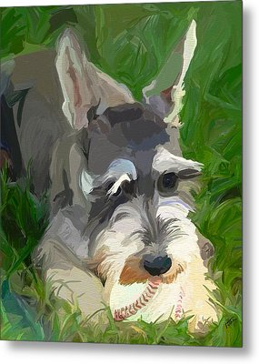 Play Ball Metal Print by Patti Siehien