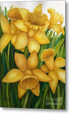 Playful Daffodils Metal Print by Vikki Wicks