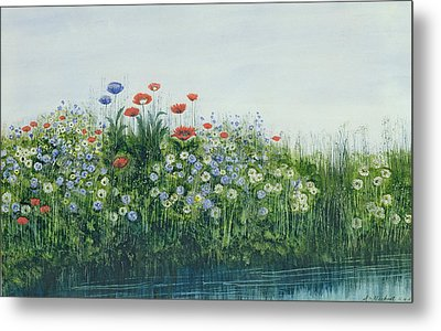 Poppies By A Stream Metal Print by Andrew Nicholl