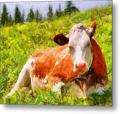 Portrait Of A Cow 2 Metal Print by Kai Saarto