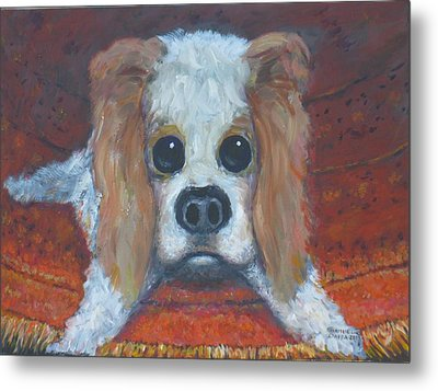 Portrait Of A Puppy Metal Print