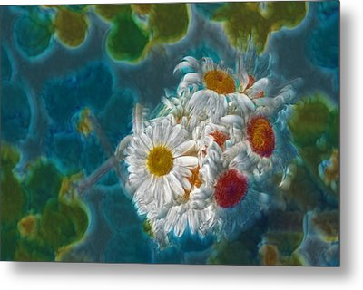 Pot Of Daisies 02 - S11bl01 Metal Print by Variance Collections