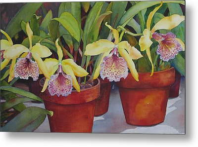 Metal Print featuring the painting Potted Orchids by Judy Mercer