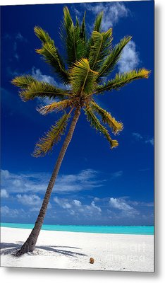 Pristine Tropical Beach  Metal Print
