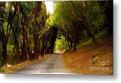 Private Property Metal Print by Sharon Costa
