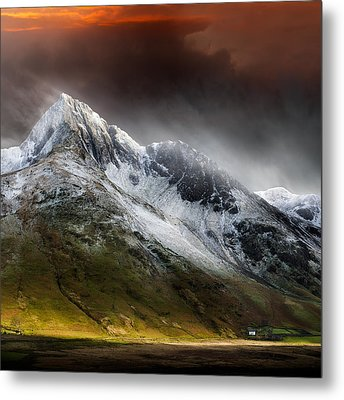 Profound Beauty Metal Print by Ian David Soar
