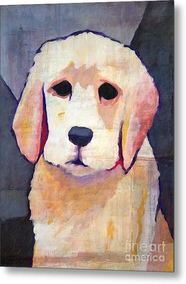 Puppy Dog Metal Print by Lutz Baar